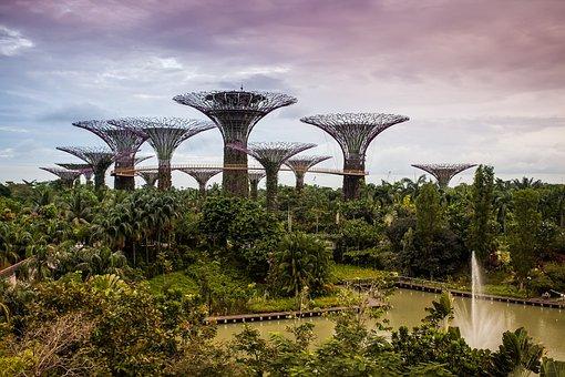 Gbtb, Singapore, Landscape, Garden, Nature, Asia, Tree