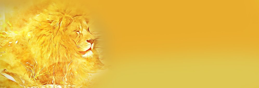 Banner, Digital, Graphics, Lion, Yellow, Yellowish
