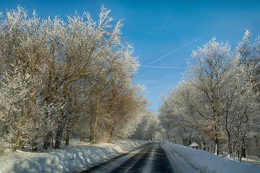 Winter, Trees, Snow, Path, Mountains, Landscape, Nature