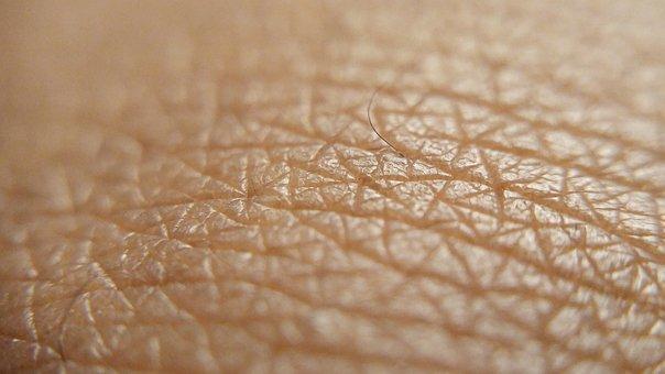 Skin, Brown Skin, Skin Up Close, Brown Skin Up Close