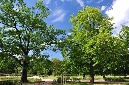 Poland, Warsaw, Garden Krasinski, Park, Summer