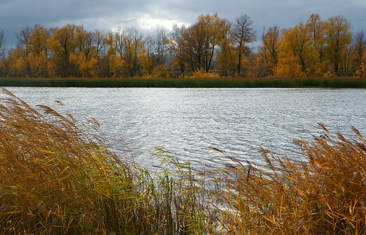 River, Water, Nature, The Glare, Sky, Autumn, Clouds