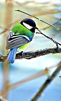 Digital, Graphics, Bird, Titmouse, Color, Winter