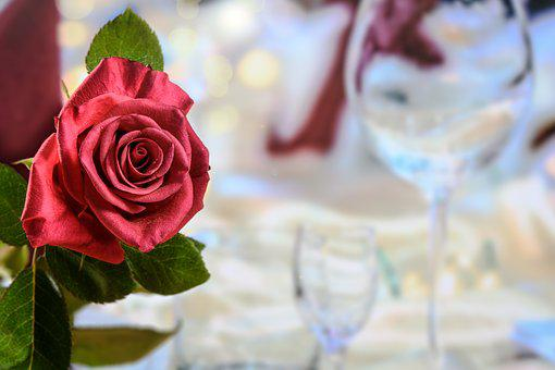 Dinner, Red Rose, Love, The Feast Of The, Honeymoon