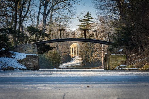 Winter, Park, Park Wörlitz, Cold, Snow, Trees