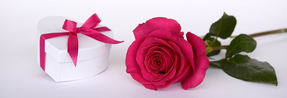 Rose, Heart, Gift, Loop, Surprise, Give, Open, Pink