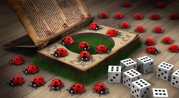 Luck, Ladybug, Secret, Book Contents, Bugs, Book