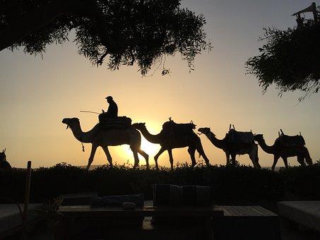 Newsletter, Desert, Morocco, Beach, Dunes, Sky