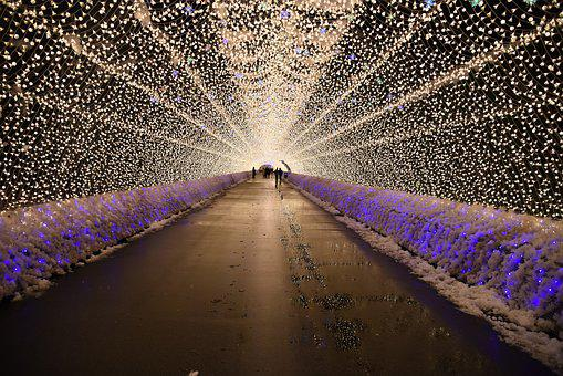 Light, Light Festival, Decoration, Illuminated