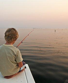 Boy, Lake, Fishing, Child, People, Nature, Summer
