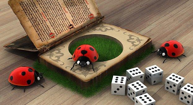 Ladybug, Secrets, Book Contents, Bugs, Book