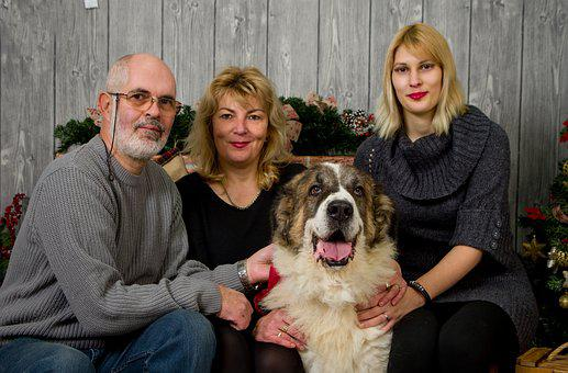 Family, Christmas, Christmas Photo, Dog
