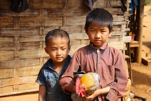 Boys, Little, Young, Happy, Walking, Laos, Local