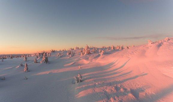 Snowy, Winter, Mountain, Snow Landscape, Nature, Season
