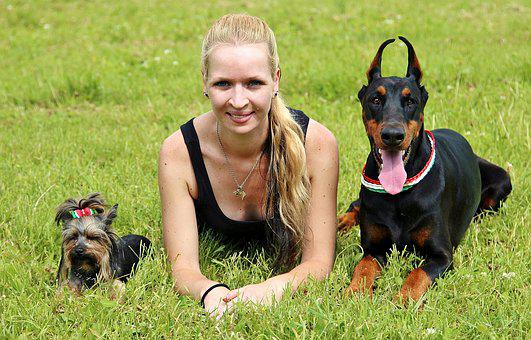 Location, Women And Dogs, Doberman, Yorkie