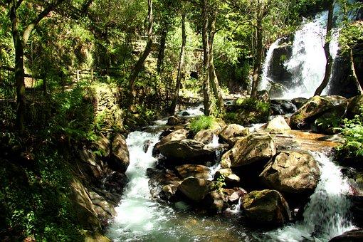 Cascade, Sever, Cabreia, Vouga, Forest, Long Exposure