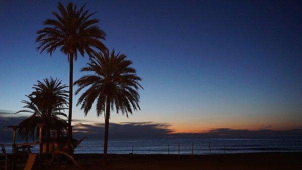Marbella, Spain, Sunrise, Palms, Seaside, Malaga
