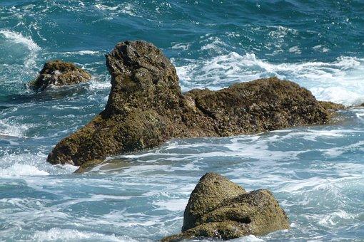 Cliffs, Sea, Madeira, Coast, Portugal, Ocean, Summer