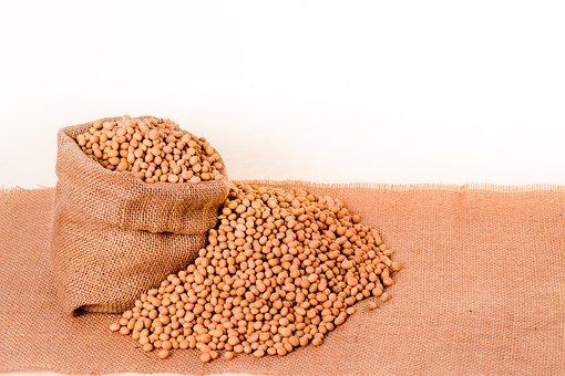Soybeans, Plants, Seeds, Bag, Burlap, Grain, Oil, Beans