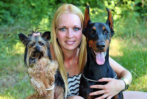Blonde Woman, Bullies, Yorkie, Love, Doberman, Hug