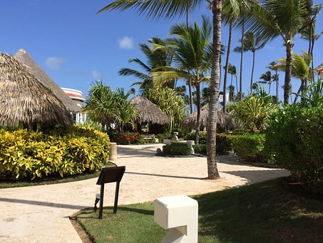 Garden, Flower Garden, Flowers, Resort, Punta Cana