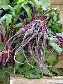 Beets, Bunch, Garden, Vegetable, Fresh, Beetroot