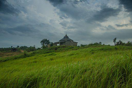 Grass, Village, Kampung, Garden, Green, Cloud
