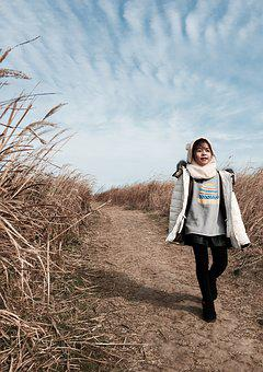 Marado, Reeds Forest, Jeju Island, Republic Of Korea