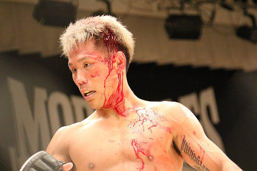 Mixed Martial Arts, Sport, Shooto, The Ring, Japan, Mma