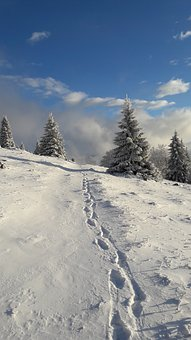 Path, Footprints, Hike, Tourism, Sun, Winter