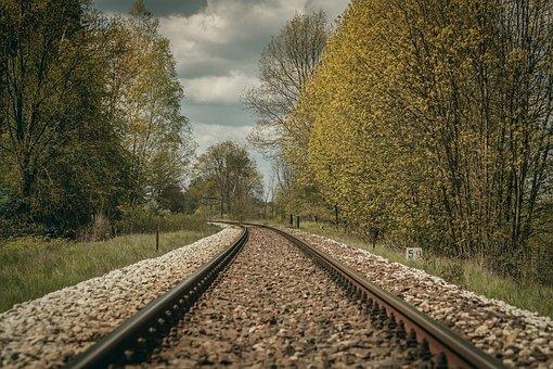 Tracks, Tree, Traction, Transport, Earthwork