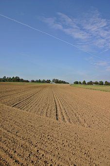 Arable, Ackerfurchen, Field, Agriculture, Nature