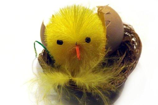 Chicken, Eggshell, Basket, Deco, Easter