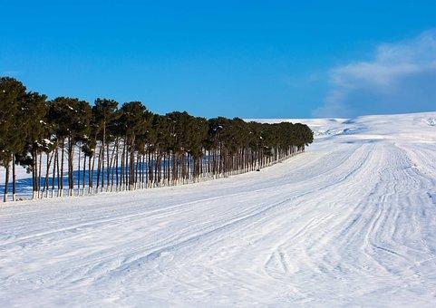 Azerbaijan, Snow, Winter, Road, Countryside, Forest