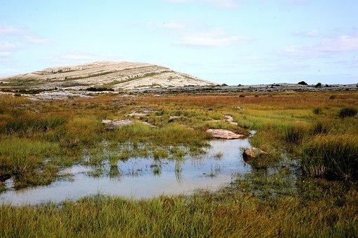 Burren, Burren National Park, National Park, Landscape