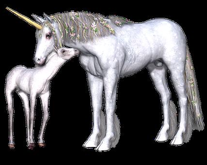 Unicorn, Fantasy, Fairy, Tale, White, Mythology, Horned
