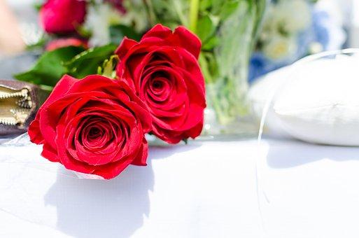 Svatba, Růže, červenými, Zamilovat, Romantika, Dekorace