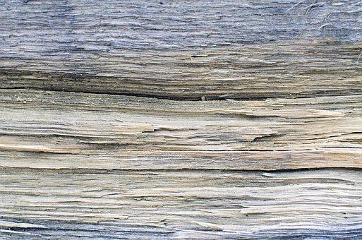 Dřevo, Abstraktní, Pozadí, Kůra, Stromové Kůry, Strom