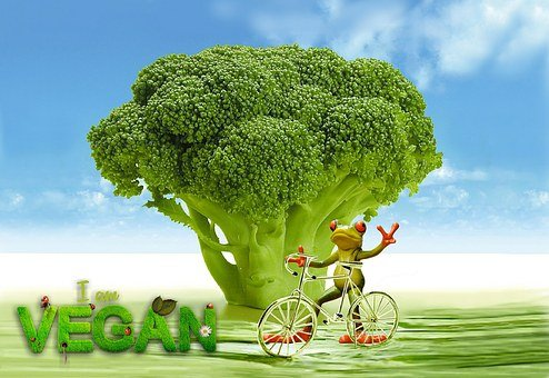 Vegan, Appetite, Broccoli, Frog, Bike, Funny, Cute