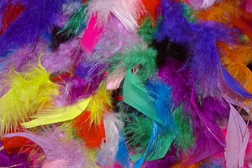 Feather, Colorful Feathers, Carnival, Stoles, Colorful