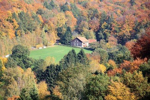 Teutoburg Forest, Forest, Autumn, Deciduous Forest