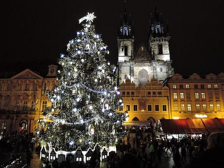 Prague, Christmas, Tree, Christmas Tree, Ornament