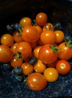 Tomatoes, Vegetable, Garden, Homegrown, Food, Tomato