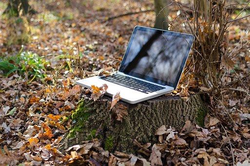 Laptop, Computer, Pc, Notebook, Green, Wireless