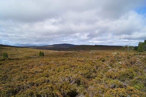 Landscape, Scenery, Wilderness, Tasmania