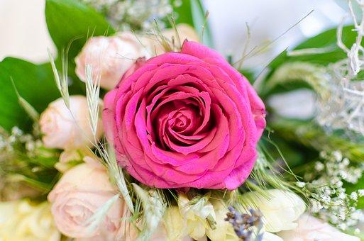 Wedding, Bouquet, Vibrant, Flowers, Tenderness