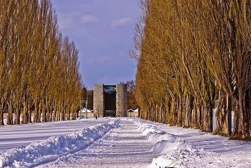 Kz, Memorial, Dachau, History, Konzentrationslager