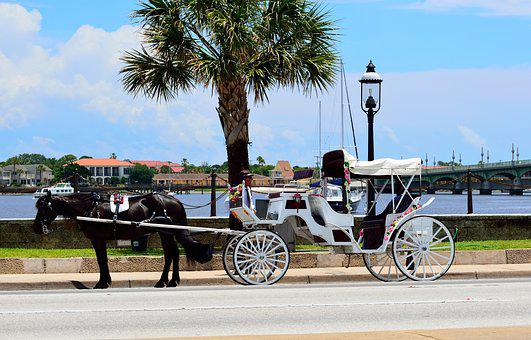 Horse And Carriage, St Augustine, Florida, Tourism