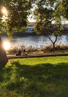 Spanish Winter, Guadalquivir, Park, River Bank, Two