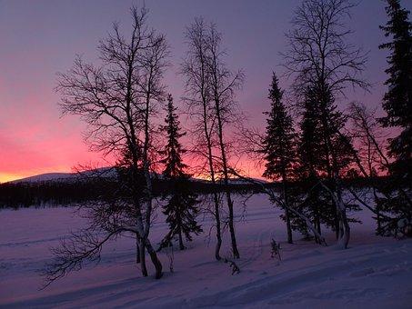 Winter, Finland, Lapland, Snowy, Landscape, Winter Mood